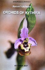 Orchidee di Citera