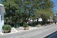 Tavern Platanos | Mylopotamos